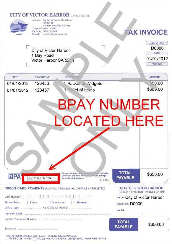 Pay Debtors Invoice Sample Image
