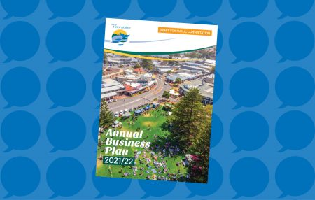 Draft 2021-22 Annual Business Plan