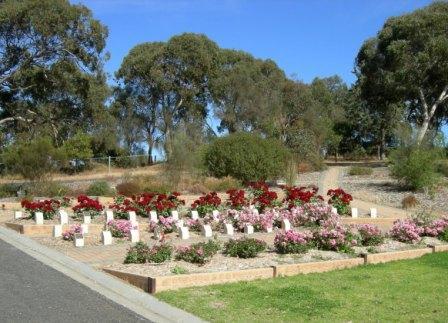 Cemetery Matthew Flinders Rose Garden